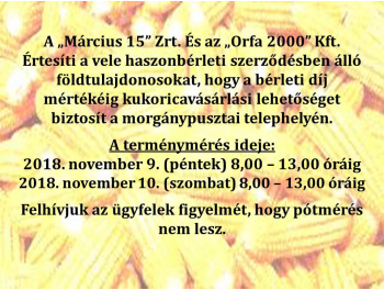 kukorica-meres_1.jpg